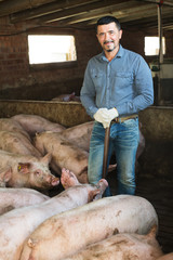 Man farmer standing in pigsty