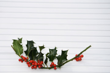 photography image of bright green holly leaves with red autumn winter berries on white wood background taken on South coast England UK