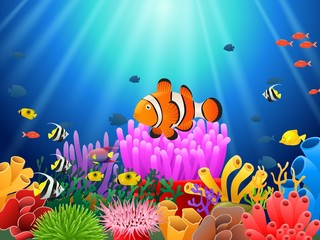 Clown fish under the sea. Vector illustration