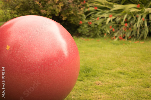 A Large Red Rubber Ball With A Small Yellow Leaf Is In Autumn Garden