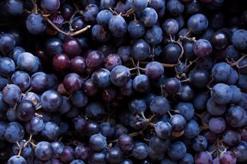 Black grapes Fototapete