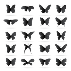 Vector group of black butterfly on white background. Butterfly icon. Insect.