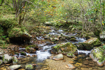 Río Alba. Ruta del Alba. Parque Natural de Redes, Asturias, España.