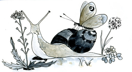 snail with buterfly watercolor illustration