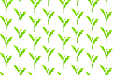 tea leaf hand painting pattern