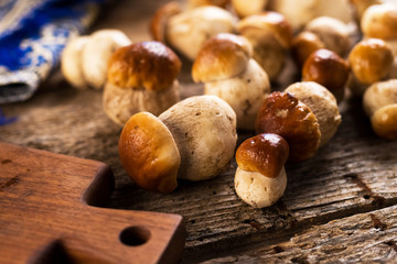Raw porcini mushrooms