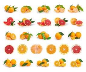 Set of citrus fruit isolated on white background. Tangerines, grapefruits and oranges