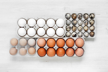 Some types of eggs in the packages