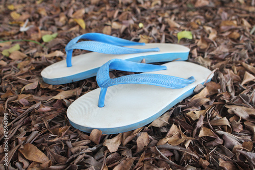 1724f981a35a White sandal on leaves brown background