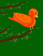 uccello su un albero