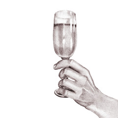 Hand drawn pencil sketch. A human hand holding a glass of champagne. Illustrations in a realistic style.