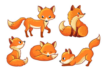 Set of cute cartoon foxes in cartoon style. Vector illustration with Isolated fox on a white background.