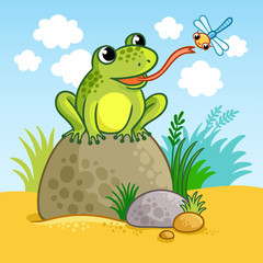 The frog sits on a large rock and catches a dragonfly. Cute vector illustration of a cartoon style.