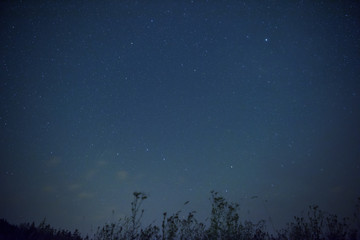 Starry sky with constellation of the Great Bear