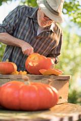 Man carving a pumpkin for halloween in his garden