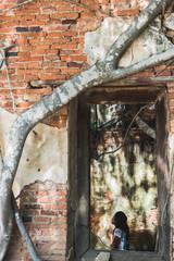 Trees fasten church