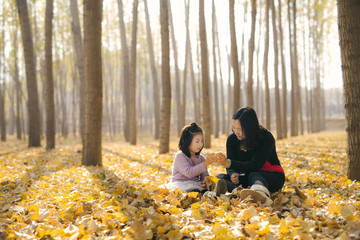 Young mother and daughter playing in autumn wood