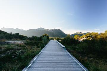 Timber Path