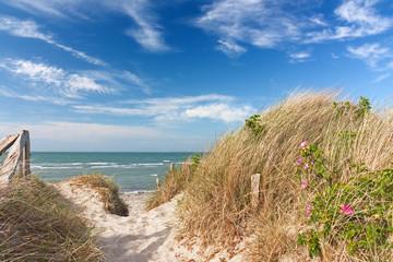 Fototapete - Weg durch Dünen zum Strand an der Ostsee mit blauem Himmel mit Wolken bei Heiligenhafen, Schleswig-Holstein