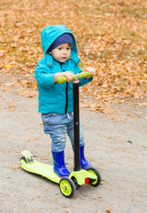 Little boy in waterproof coat and boots is riding kick scooter on yellow leaves. Active child in sport pursuit is exercising in the nature in the autumn with cold temperatures outside.