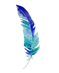 Beautiful blue and turquoise bird feather isolated on white background