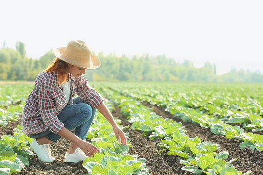 Young female farmer working in field