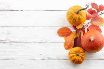 Background of colorful autumn pumpkins and leaves, fall season concept