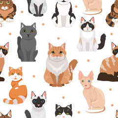 Vector seamless pattern of cute cats. Colored pictures of pets