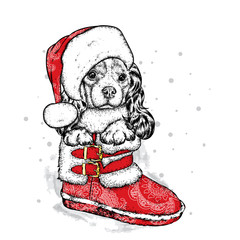 A sweet little dog in a New Year's cap is sitting in a shoe. Purebred puppy. Spaniel in winter clothes. Vector illustration for a postcard or a poster, print for clothes. New Year's and Christmas.
