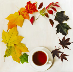 Cup of tea and autumn colorful leaves, top view