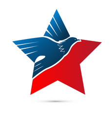 Eagle star, usa american pride, icon vector