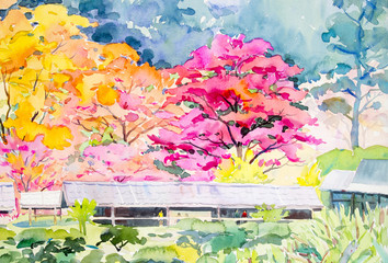 Painting colorful of  wild himalayan cherry flowers on the mountain