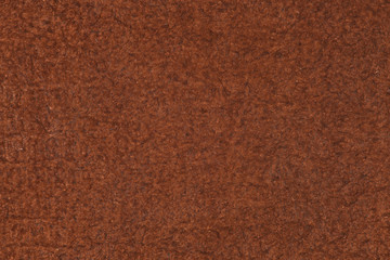 High resolution texture. Background. Skin