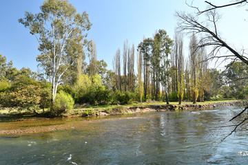 Tumut River