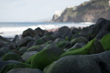 mossy rocks at the ocean
