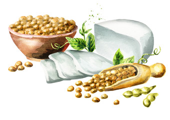 Soy tofu and soybeans in the bowl. Watercolor hand drawn illustration.