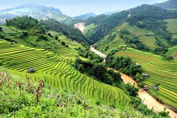 Autocollant pour porte Les champs de riz Rice fields on terraced of Vietnam