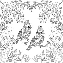 Tropical birds for adult coloring book page.zentangle stlyized.vector illustration.