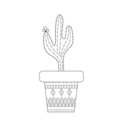 Cactus zentangle style for adult and children coloring book page.vector illustration.