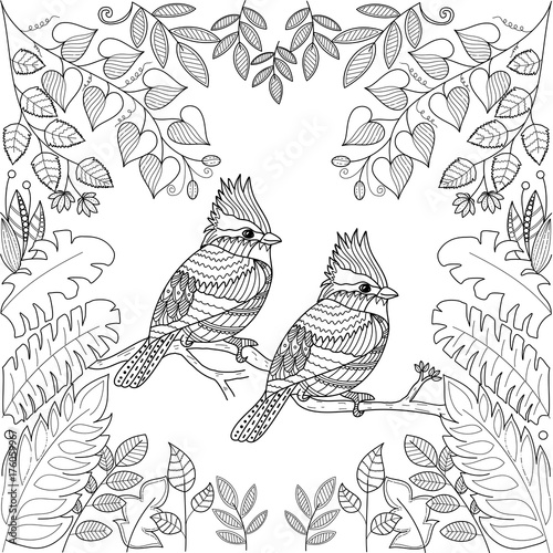 Tropical Birds For Adult Coloring Book Pagezentangle Stlyizedvector Illustration