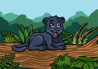 young black panther in the jungle