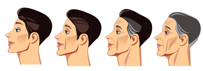 face of man in profile at different ages, vector illustration, human face in different periods of life, young man, middle-aged man, elderly man