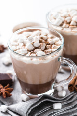 Poster Chocolate Hot chocolate or cocoa with marshmallow. Traditional winter drink.