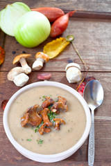 Pilz- Suppe