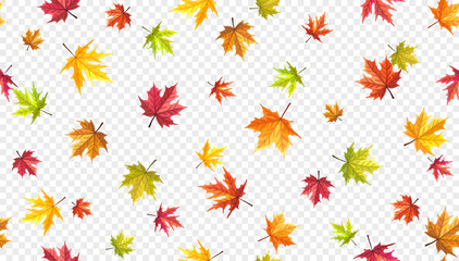 Autumn leaves flying on wind isolated on transparent background. Flalling maple leaves template.