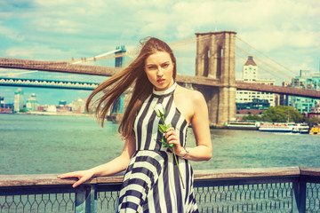 Young Woman missing you, waiting for you, holding white rose, wearing black, white striped dress, long hair float in air, standing by river in New York. Manhattan, Brooklyn bridges on background..
