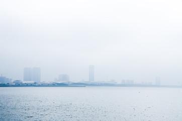 海霧の幕張海岸の鳥の群れ 船橋・茜浜より