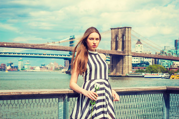 Young Woman missing you, waiting for you, holding white rose, wearing black, white striped dress, standing by fence at harbor in New York. Manhattan, Brooklyn bridges on background. Filtered effect..