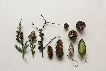 Pinecones side by side on wooden background