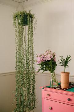 Pink flowers sit on pink dresser